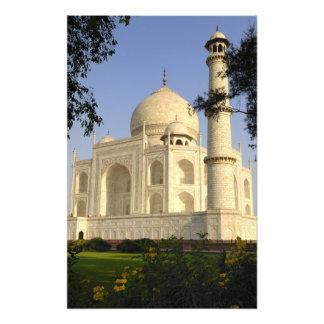 Asia, India, Uttar Pradesh, Agra. The Taj 2 Photo Art