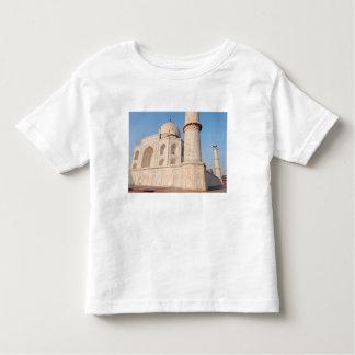 Asia, India, Uttar Pradesh, Agra. The Taj 4 T Shirt
