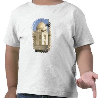 Asia, India, Uttar Pradesh, Agra. The Taj Tee Shirts
