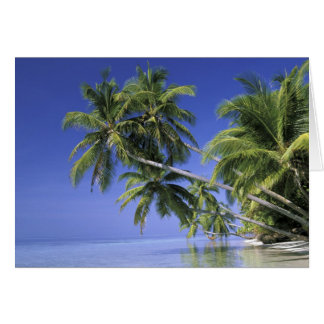 Asia, islas maldivas. Hombre en hamaca en 2 Tarjetas