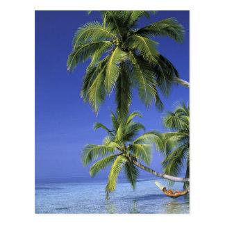 Asia, islas maldivas. Hombre en hamaca encendido Postales