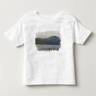 Asia, Japan, Hakone. Early morning views of Mt. T Shirt