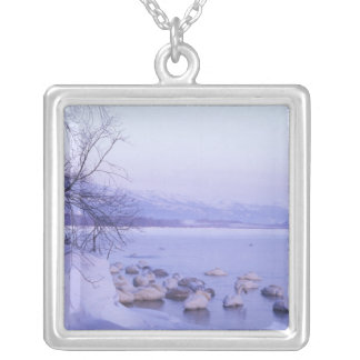 Asia, Japan, Hokkaido, Akan NP, Whopper Swans Silver Plated Necklace