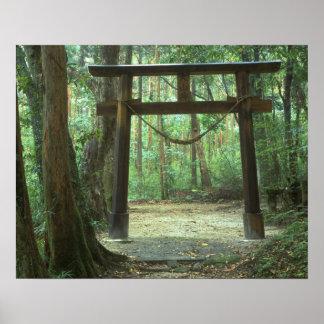 Asia, Japan, Kagoshima, Yakushima, Mountain Poster