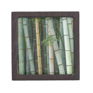 Asia, Japan, Kyoto, Arashiyama, Sagano, Bamboo Keepsake Box