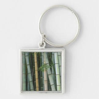 Asia, Japan, Kyoto, Arashiyama, Sagano, Bamboo Key Chain