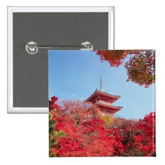 Asia, Japan, Kyoto. Autumn Colour Button