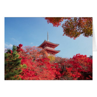 Asia, Japan, Kyoto. Autumn Colour Card