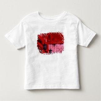 Asia, Japan, Kyoto, Heian shrine in spring. T Shirt