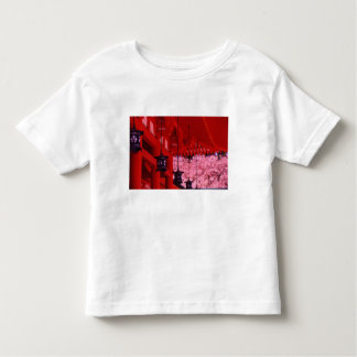 Asia, Japan, Kyoto, Heian shrine in spring. Shirts