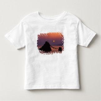 Asia, Japan, Mie, Futamigaura at Dawn Toddler T-shirt
