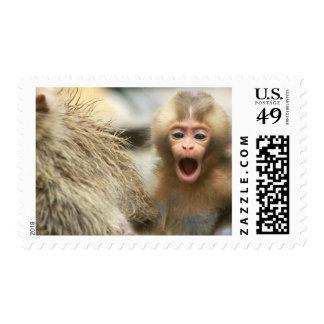 Asia, Japan, Nagano, Jigokudani, Snow Monkey Stamp