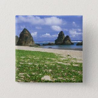 Asia, Japan, Okinawa, Yambaru Coastline, Sea Button