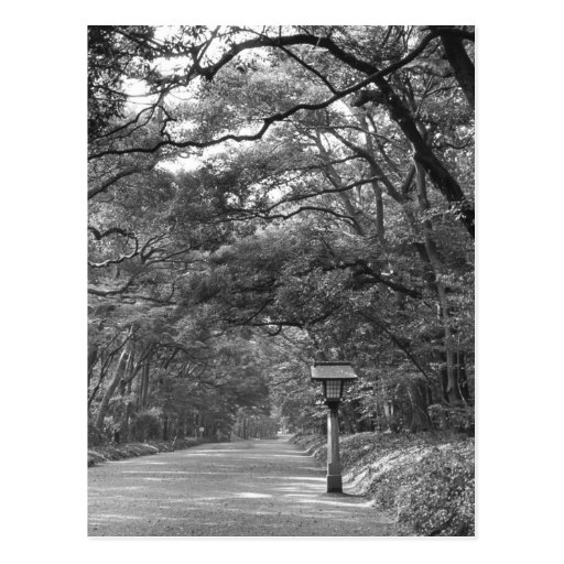 Asia, Japan, Tokyo, Grounds of Meiji Shrine, Post Card