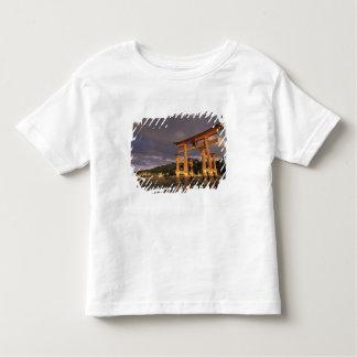 Asia, Japón, Honshu occidental, Miya, isla de Playera De Bebé
