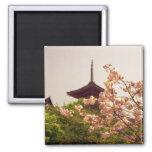 Asia, Japón, Kyoto, templo de Kiyomizu en primaver Imán Cuadrado