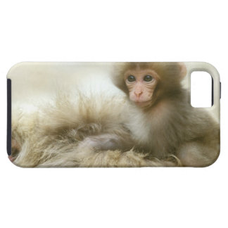 Asia, Japón, Nagano, Jigokudani, mono 3 de la iPhone 5 Case-Mate Cárcasa