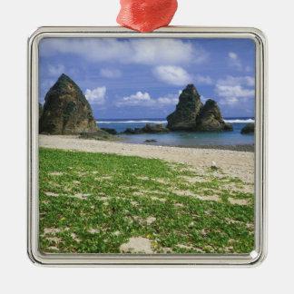 Asia, Japón, Okinawa, costa costa de Yambaru, mar Adorno Cuadrado Plateado