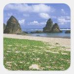 Asia, Japón, Okinawa, costa costa de Yambaru, mar Calcomanías Cuadradases