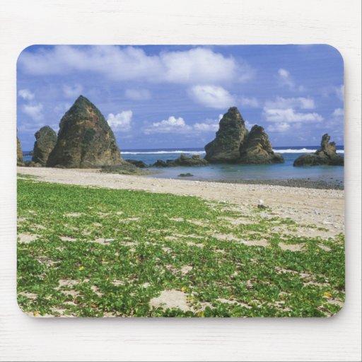 Asia, Japón, Okinawa, costa costa de Yambaru, mar Alfombrilla De Ratón