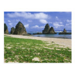 Asia, Japón, Okinawa, costa costa de Yambaru, mar Postal