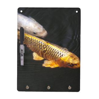 Asia Koi Fish Dry-Erase Board