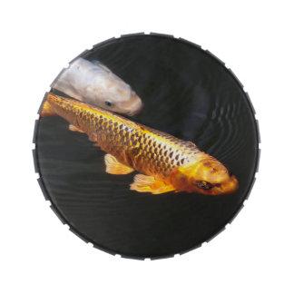 Asia Koi Fish Jelly Belly Tin