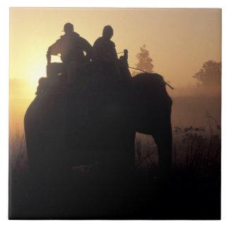 Asia, la India, Kanha NP, safari del elefante Azulejo Cuadrado Grande