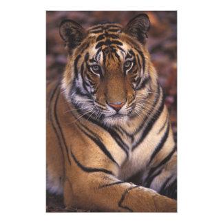 Asia, la India, parque nacional de Bandhavgarth, Fotografías