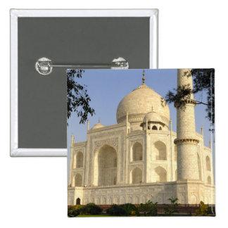 Asia, la India, Uttar Pradesh, Agra. El Taj Pins