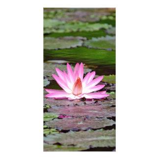 Asia Lotus Flower Card