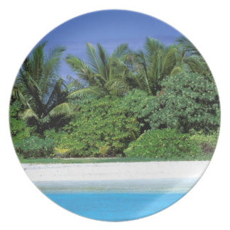 Asia, Maldives. North Male Atoll Party Plates