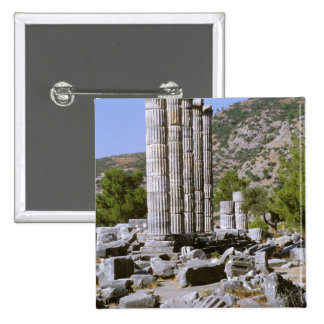 Asia, Middle East, Turkey, Ephesus. Temple of 2 Inch Square Button