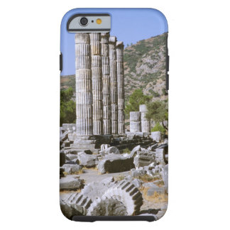 Asia, Middle East, Turkey, Ephesus. Temple of iPhone 6 Case