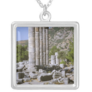 Asia, Middle East, Turkey, Ephesus. Temple of Silver Plated Necklace