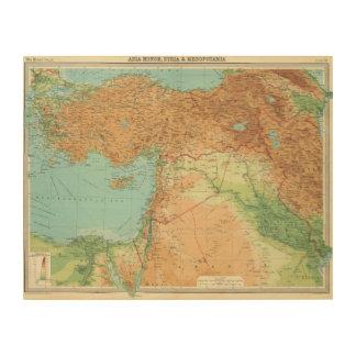 Asia Minor, Syria & Mesopotamia Wood Wall Art