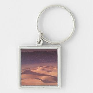 Asia, Mongolia, Gobi Desert, Gobi Gurvansaikhan Silver-Colored Square Keychain