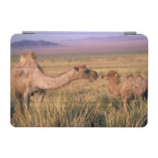Asia, Mongolia, Gobi Desert, Great Gobi iPad Mini Cover