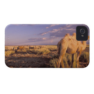 Asia, Mongolia, Gobi Desert, Great Gobi iPhone 4 Case-Mate Case