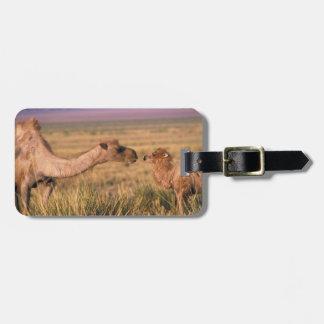 Asia, Mongolia, Gobi Desert, Great Gobi Luggage Tags