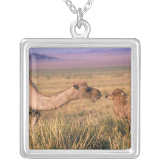 Asia, Mongolia, Gobi Desert, Great Gobi Square Pendant Necklace