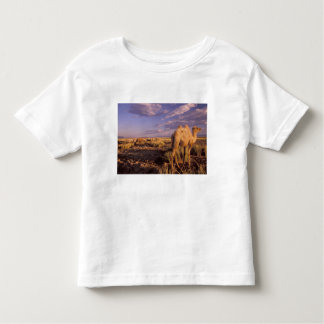 Asia, Mongolia, Gobi Desert, Great Gobi Toddler T-shirt