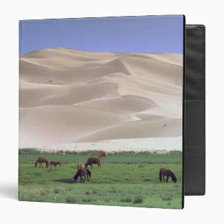 Asia, Mongolia, Gobi Desert. Wild horses. Vinyl Binders