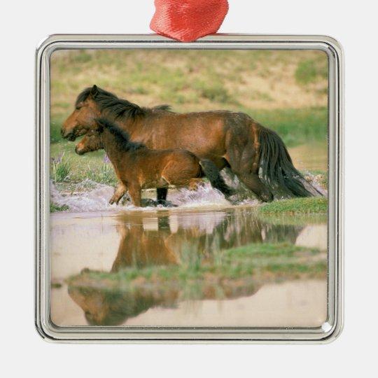 Asia, Mongolia, Gobi Desert. Wild horses. Metal Ornament