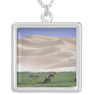 Asia, Mongolia, Gobi Desert. Wild horses. Square Pendant Necklace