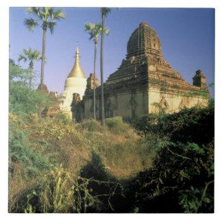 Asia, Myanmar, Bagan. Kubyauk-Gyi Temple. Large Square Tile