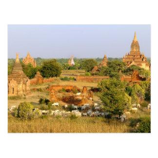 Asia, Myanmar (Birmania), Bagan (Pagan). Paso de Tarjetas Postales