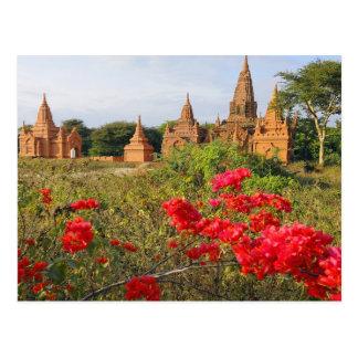 Asia, Myanmar (Birmania), Bagan (Pagan). Un Bagan Tarjetas Postales