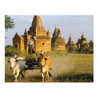 Asia, Myanmar (Birmania), Bagan (Pagan). Un carro Postal