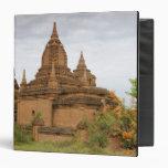 "Asia, Myanmar Birmania), Pagan de Bagan). Diverso Carpeta 1 1/2"""